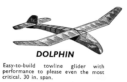 Dolphin model plane