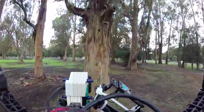 skydio avoiding a tree