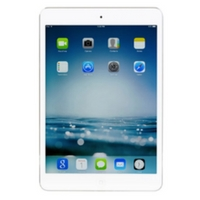 dji mavic pro iPad tablet