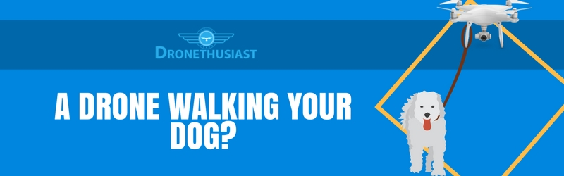 drone walking your dog dronethusiast