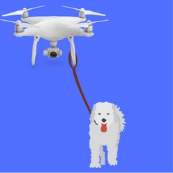 how to walk your dog with a drone