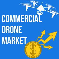 www.dronethusiast.com