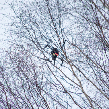 how to get a drone out of a tree 1