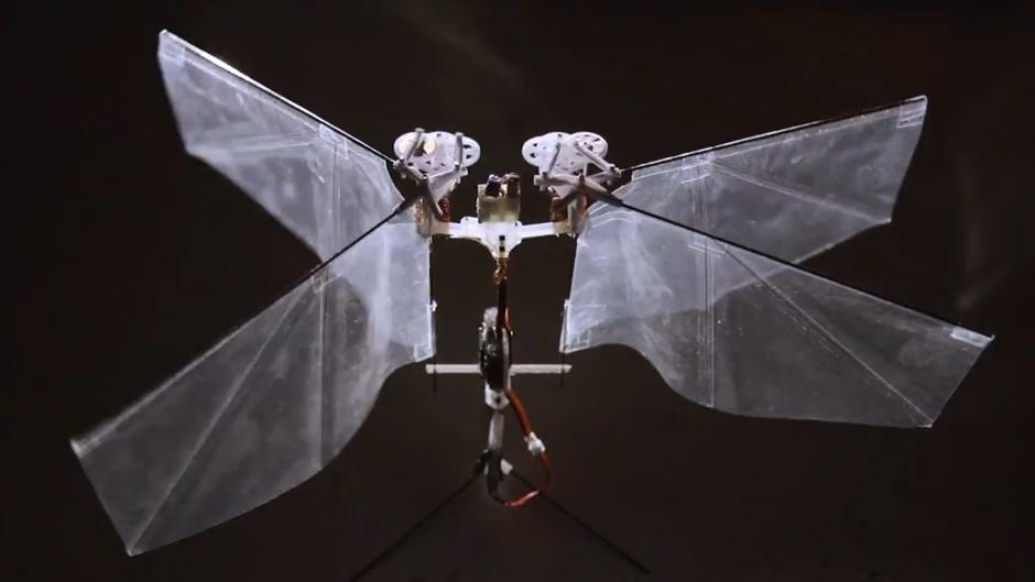 drone fly like insect delfly