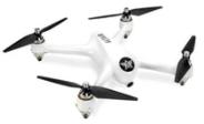 adult drones