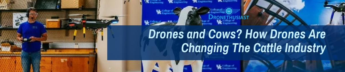 Drones and Cows_ How Drones Are Changing The Cattle Industry